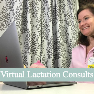 Need a VIRTUAL Lactation Consultant?
