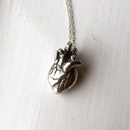 VENA Sterling Silver Necklace