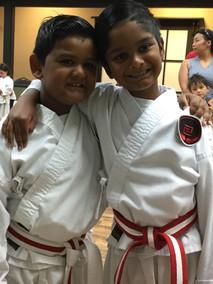 karate brothers