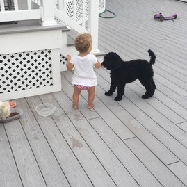 Knight with his buddy! (Maggie/Kenny 2016)