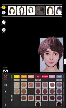 ScreenImage_Simulation