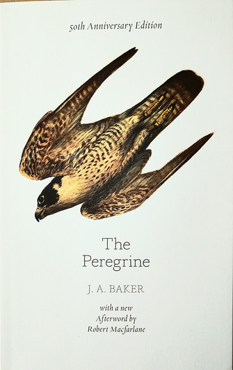 The Peregrine by John Alec Baker