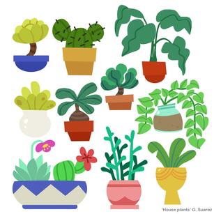 10plants.png
