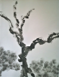 Sylvain Dhueme Paysages