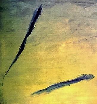 Divergence (Poissons dans un bassin)
