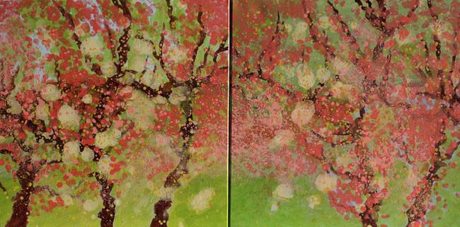 SD2020-06-01-6 Rosée du matin.JPG