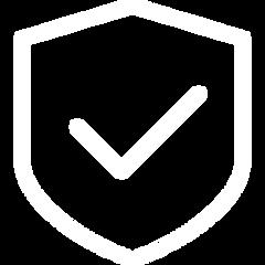 shield 1.png