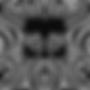 雷神logo.png