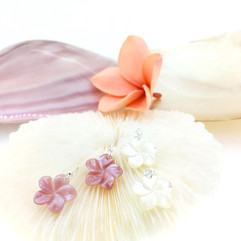 pink shell & white shell