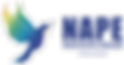 Logo Nape Vetor-01.png