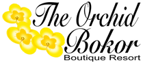 The Orchid Logo Yellow Clear.png