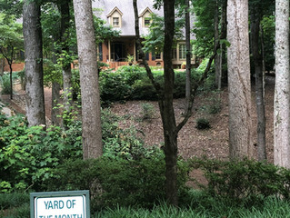 June Yard of the Month