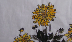 Chrysantèmes
