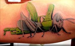 grasshopper gun