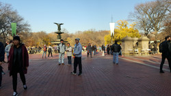People watching in Central Park