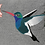 Thumbnail: Hummingbird (Made to Order)
