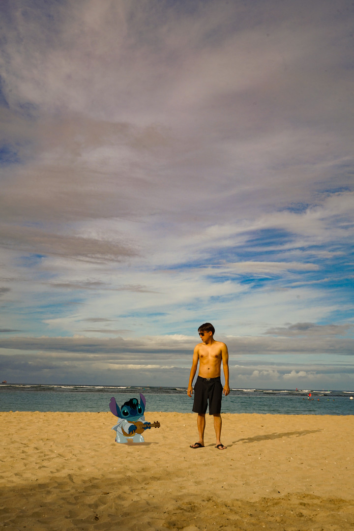 Stitch on the beach.jpg