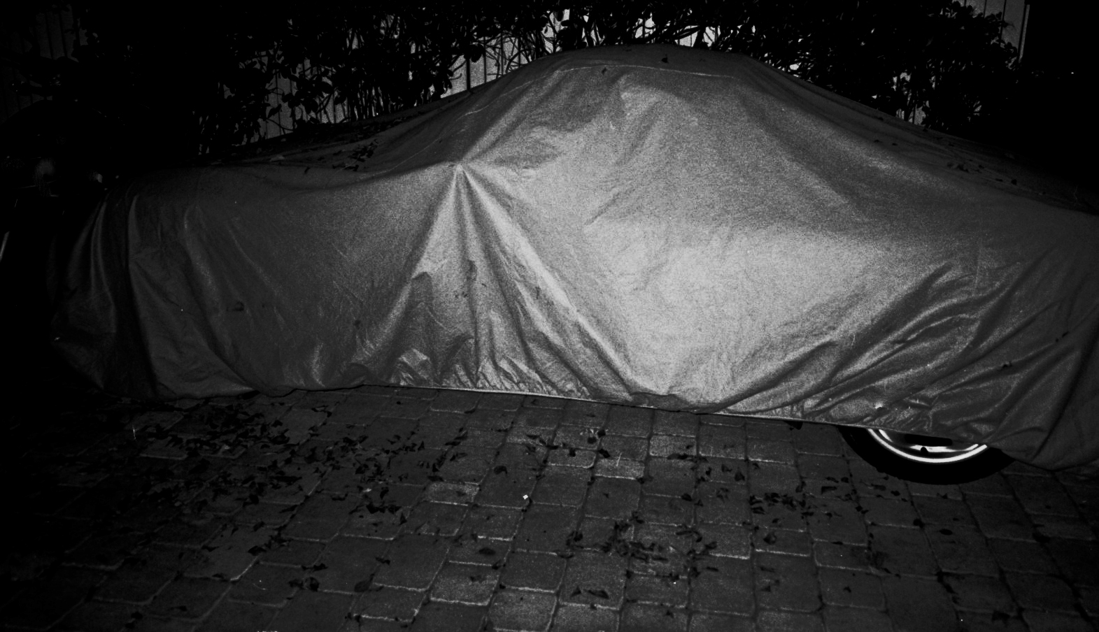 car in blanket.jpg