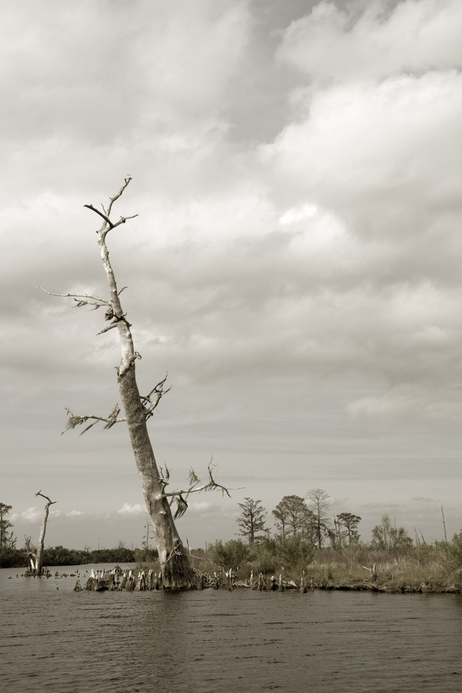 Reconstructing Land In Louisiana...Lack of Funding Is Helping To Sink The State