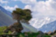 טיול ג'יפים בקירגיזסטן, קירגיסטן, קירגיסטאן, טיול מאורגן לקירגיזסטן, ארץ הנוודים, דרך המשי, ההרים השמימיים, איסיק קול, אגם איסיקול, בישקק קירגיזסטן, קרקול קירגיסטן, הרי טיאן שאן, הרי פמיר,קירגיזיה, טיול קירגיזסטן, טיול קירגיסטן, טיול קירגיסטאן, אגם הנעלם