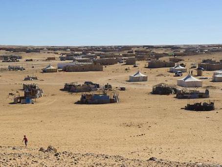 The Sahrawi Forgotten Refugees