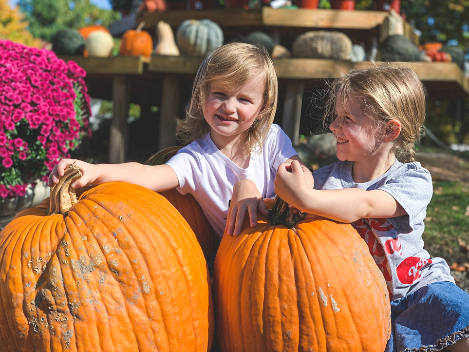 Robinson Family Farm Pumpkins.jpg