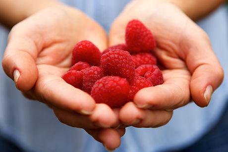 raspberry picking scarecrow farm.jpg
