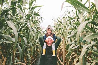 Robinson Family Farm Corn Maze.jpg