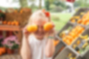 Harvest_Tyme_Pumpkins.jpg
