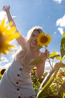 Robinson Family Farm Sunflowers