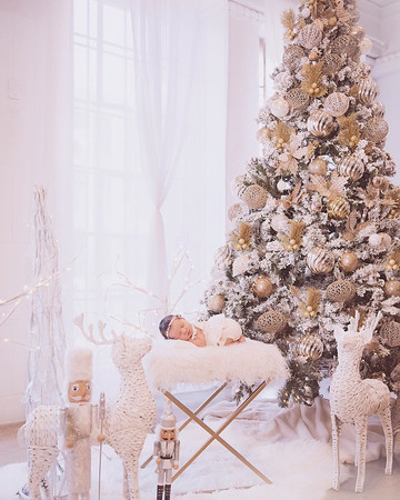 Christmas Shoot by Junior Photo La