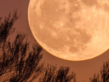 ¡Hoy hay Luna llena o luna de cosecha! (Martes 21 de septiembre)