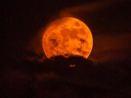 Conjunción de la Luna y Marte del 21 de enero