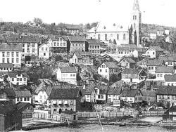Barbu i 1890'erne