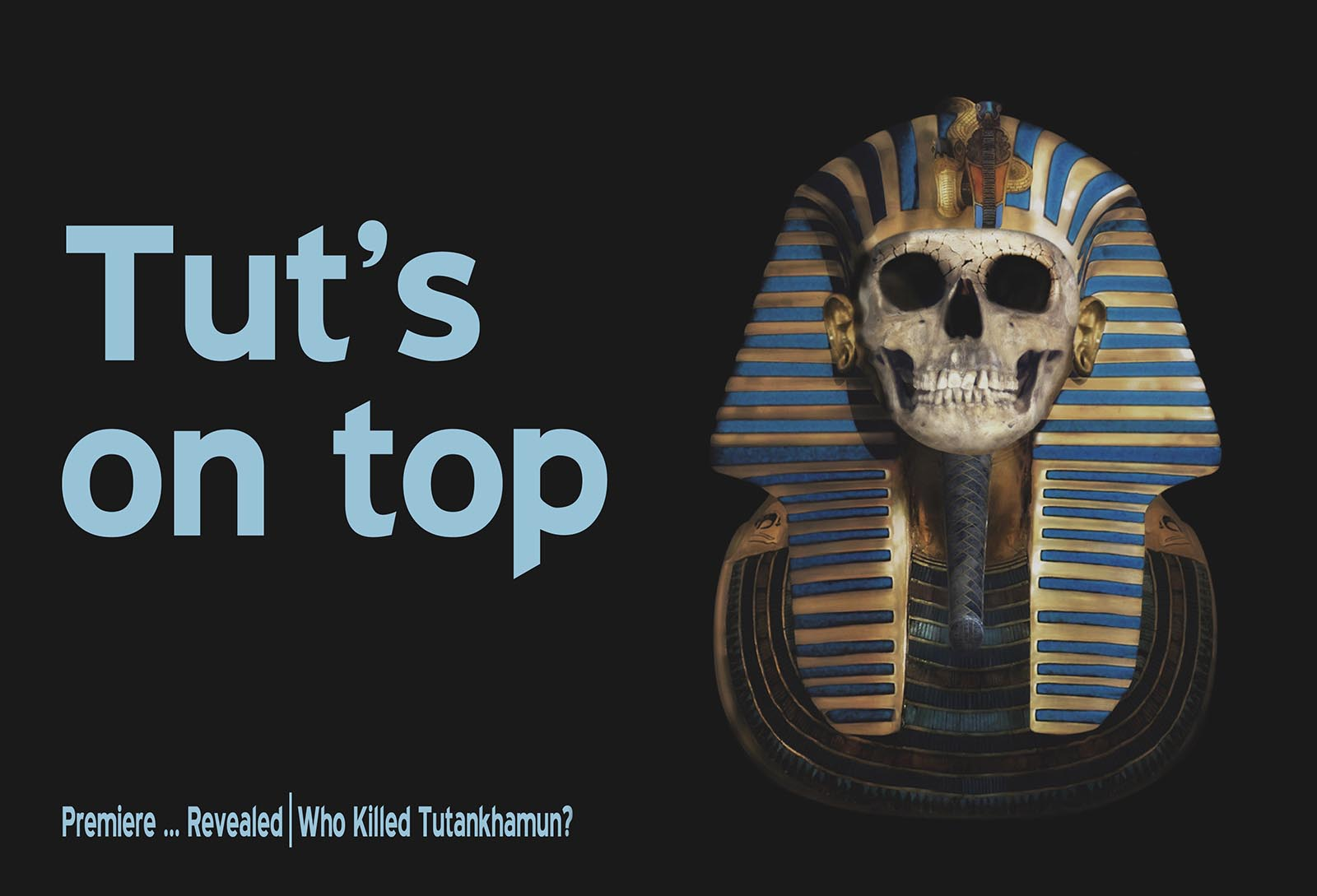 Who Killed Tutankhamun