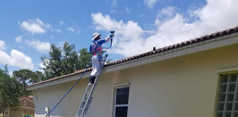Clean Master Exterior Services Roof Wash