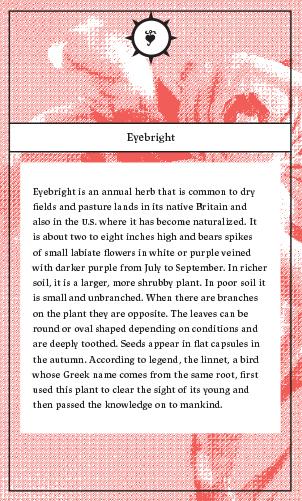 herbalchemy_cards-8 copy