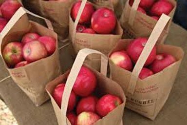 Burtt's Apple Orchard Fruit share