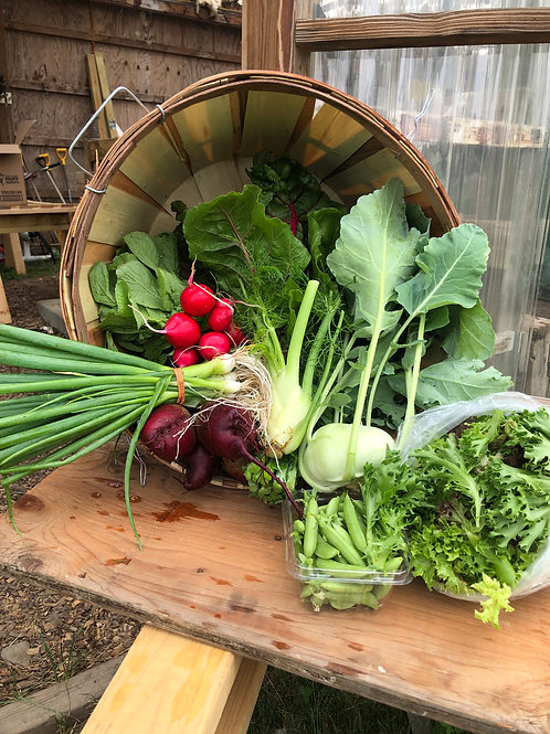 Breadseed Farm Vegetable share