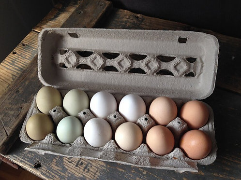 Pearce's Pastured Poultry Egg Share