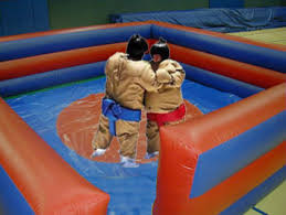sumo wrestling ring birthday party