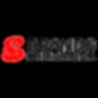 Brands International Logo Transparent.pn