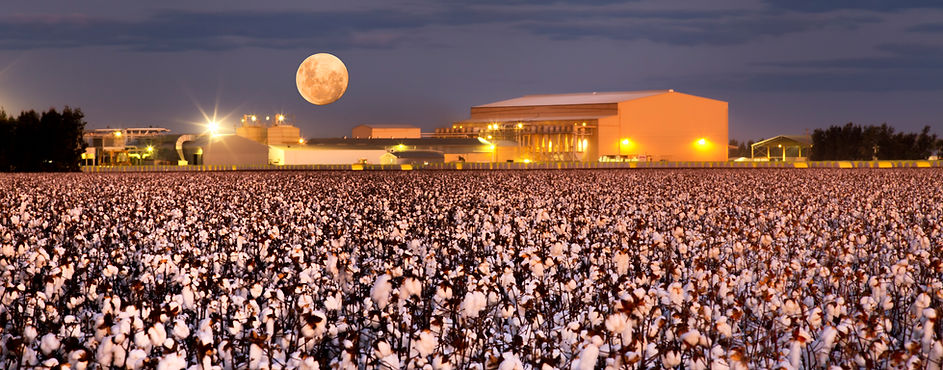 Cotton Ginning Solutions
