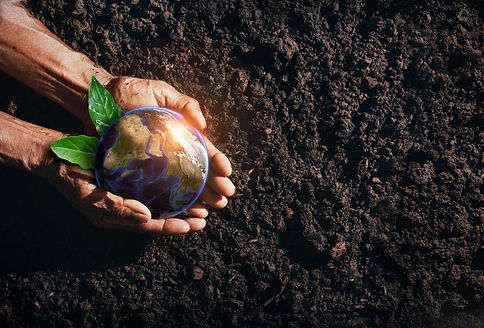 old-woman-s-hand-protect-earth-concept-preserving-nature-future-humanity-csr-concept-eleme