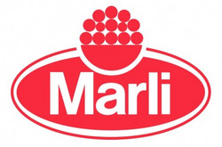 marli_edited.jpg