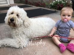 murphy1baby
