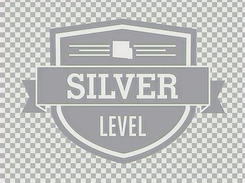 Community Partner-Silver