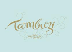 Tambuzi-logo[1]