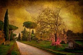 Via Appia antica, verso Napoli - texture