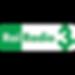 Logo-Radio-Rai-3.png